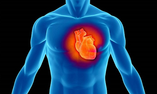 Предвестники инфаркта миокарда: симптомы и первые признаки