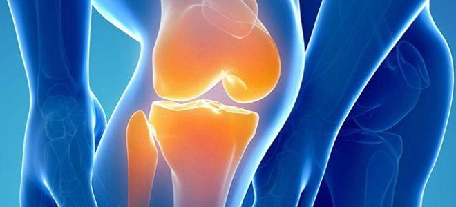 Для чего назначают МРТ суставов и как она проводится