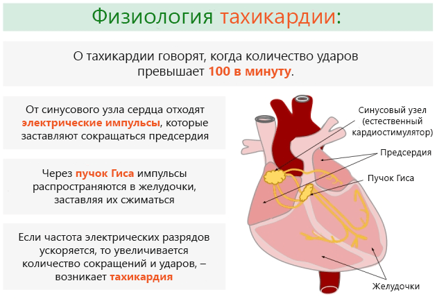 Диагностика щитовидной железы при помощи МРТ