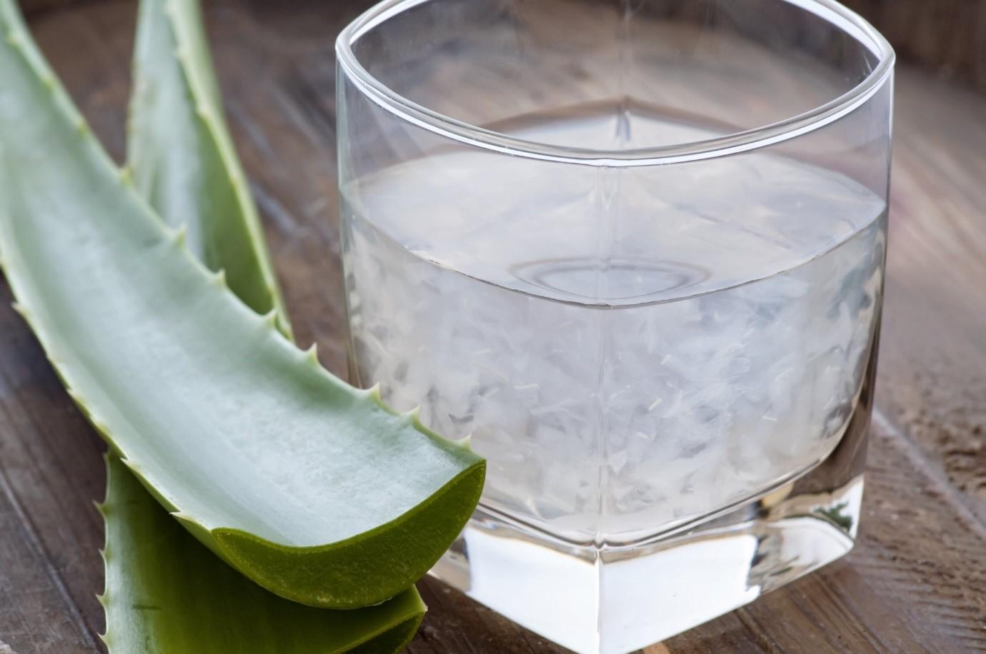 Свежеприготовленный сок алоэ быстро снимает боль в горле