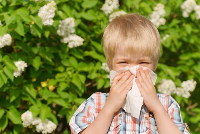 Синусит у детей как вовремя распознать симптомы и не запустить развитие болезни