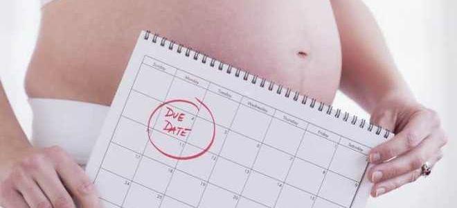 Можно ли рассчитать точную дату родов по УЗИ