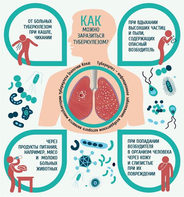 Как заражаются туберкулёзом