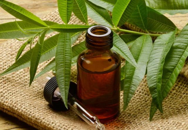 масло для лица от прыщей оливковое касторовое и чайного дерева