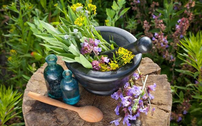 Как использовать травы при гайморите и заложенности носа