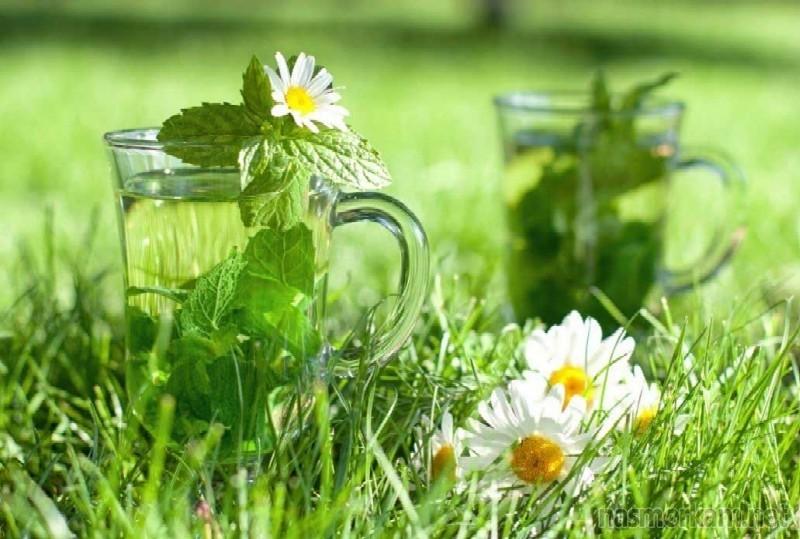 Правильно подобранные травы позволяют снять отечность пазухи и облегчают выход ее содержимого