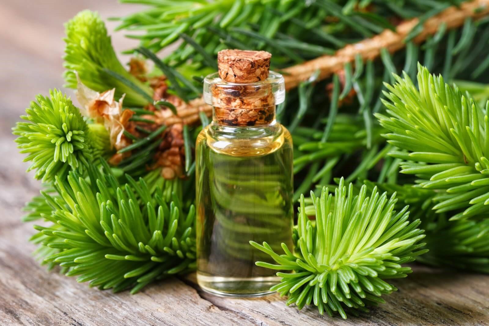 Пихтовое масло прекрасно укрепляет иммунитет