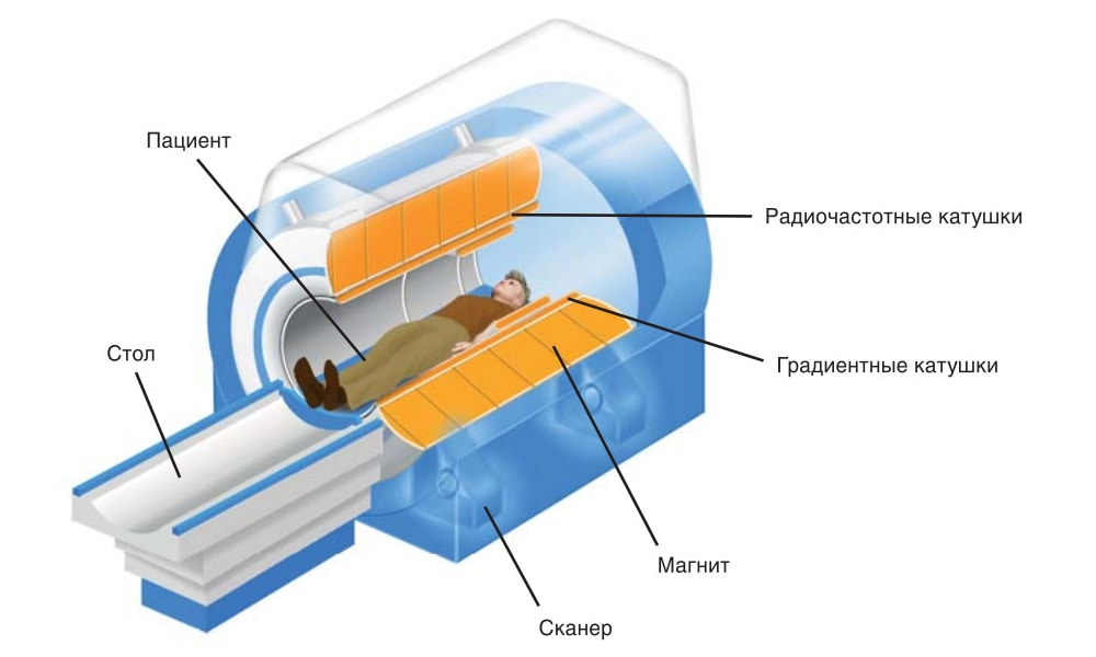 МРТ с контрастированием: когда применяется, противопоказания