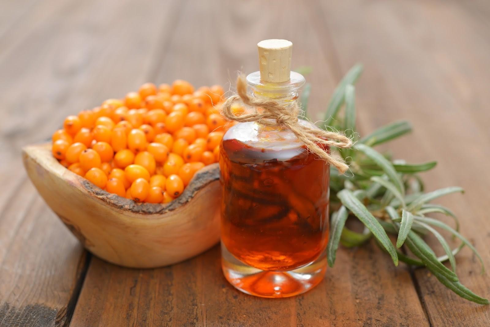 Эфирные масла облепихового масла делают его незаменимым лекарством для ингаляций