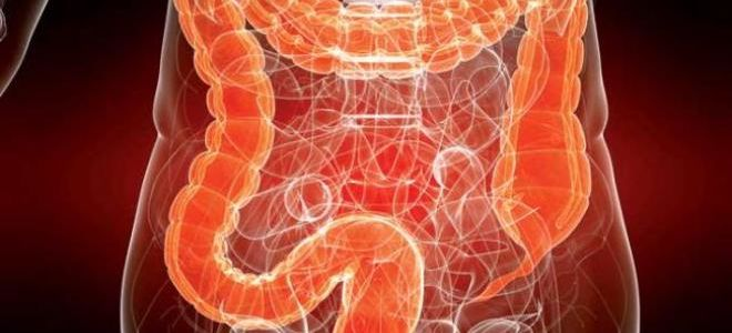 Какой метод исследования наиболее эффективен: КТ или МРТ кишечника?