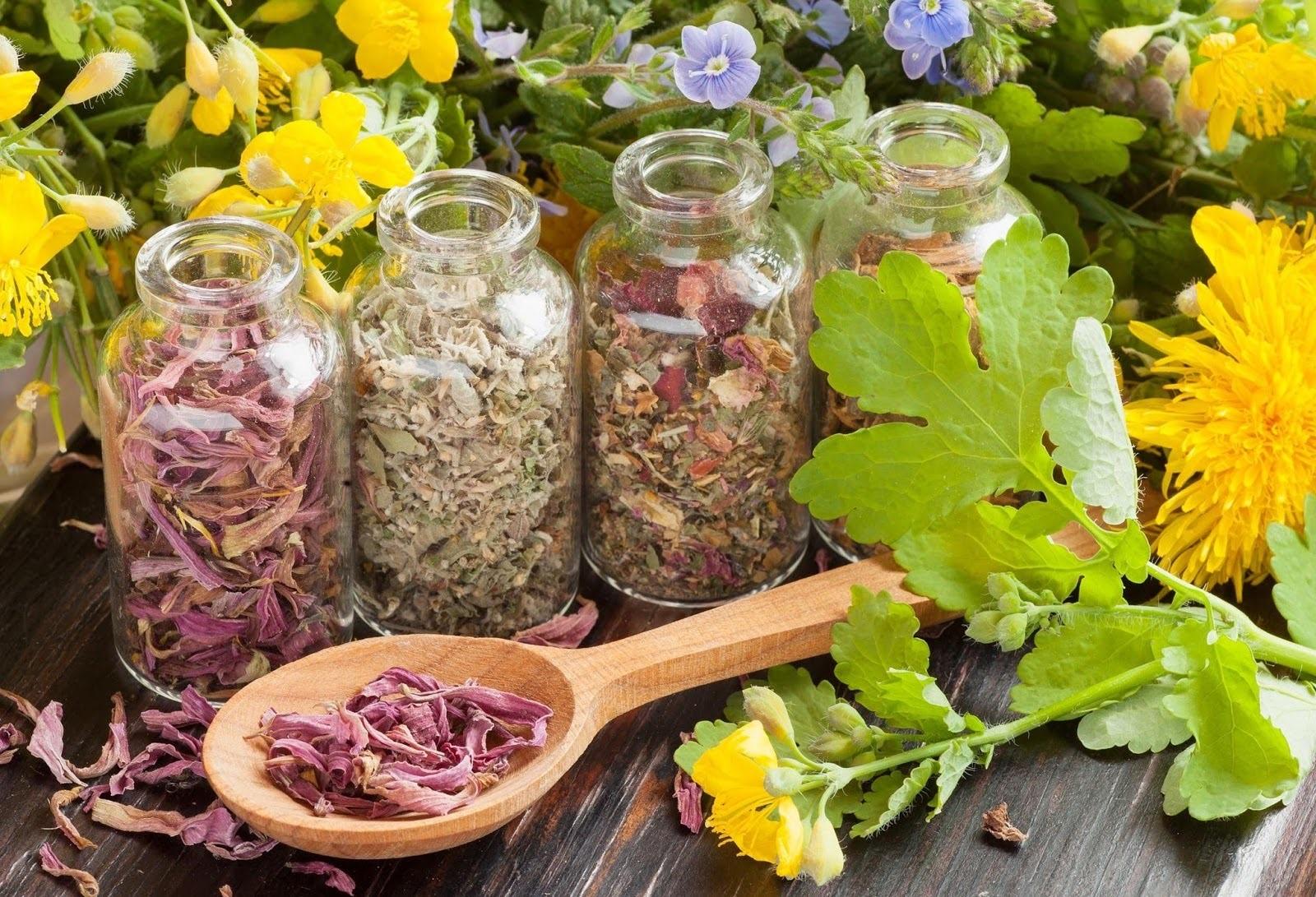 Травы можно высушить самостоятельно, либо приобрести необходимый сбор в аптеке.