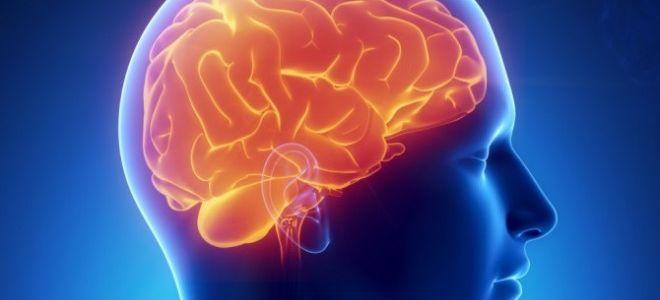 Особенности МСКТ головного мозга