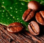 Маски для тела из какао несколько полезных рецептов