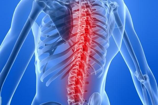 исследование спины