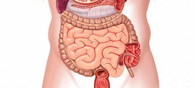 Особенности проведения КТ кишечника