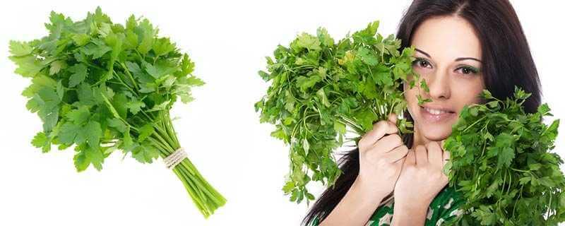 травы от морщин народные рецепты из петрушки овсянки и белка
