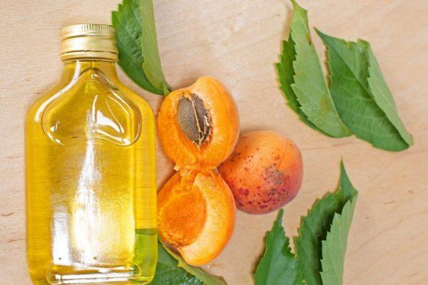 Масло абрикоса и абрикосы на столе