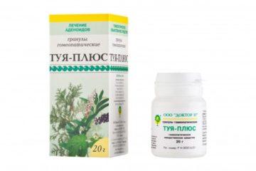 Туя (Thuja occidentalis) в гомеопатии: показания к применению