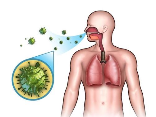 Герпесная ангина у взрослых: особенности течения болезни и эффективное лечение