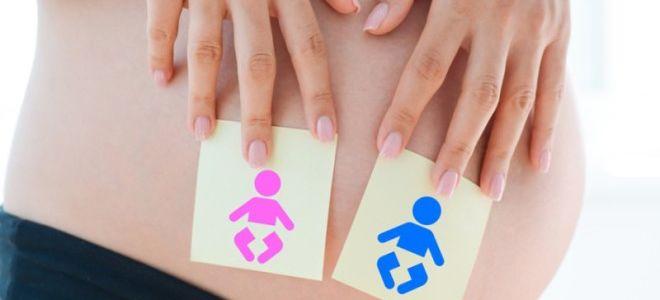 На каком сроке беременности УЗИ позволяет определить пол ребенка