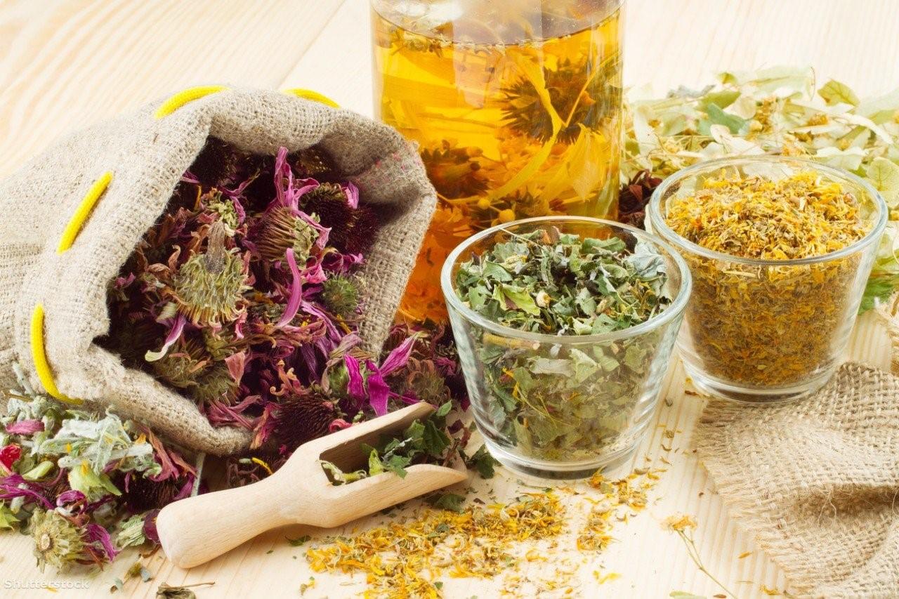 Лечебные травы составляют основу народной медицины