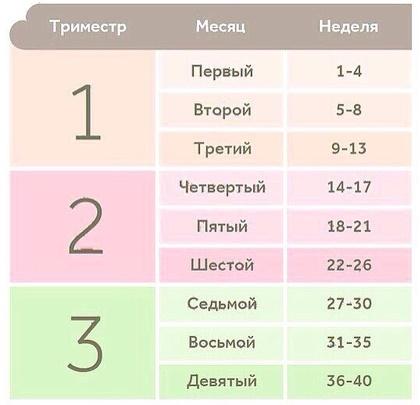 Триместры