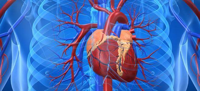 Процедура КТ грудной аорты и легочной артерии: показания и преимущества метода
